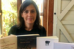 Los 5 libros recomendados de Editorial Kindberg