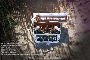 """Una nueva experiencia virtual: estreno """"Chalas Hawaianas dentro de una Ballena"""""""